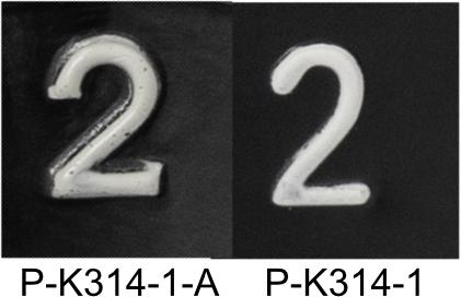 Knob Comparison Detail